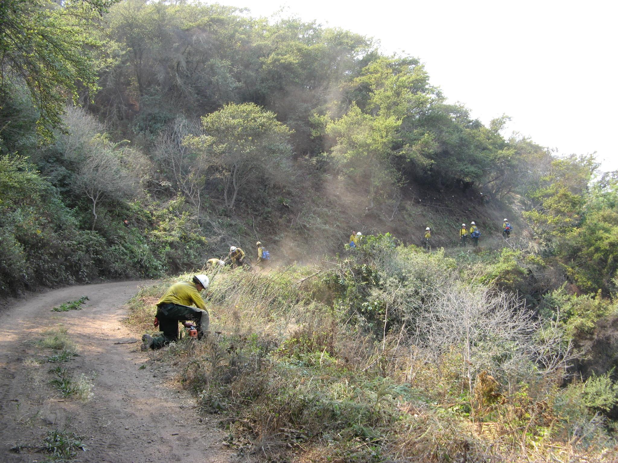 img_3142_hand-crew-brushing-road.jpg